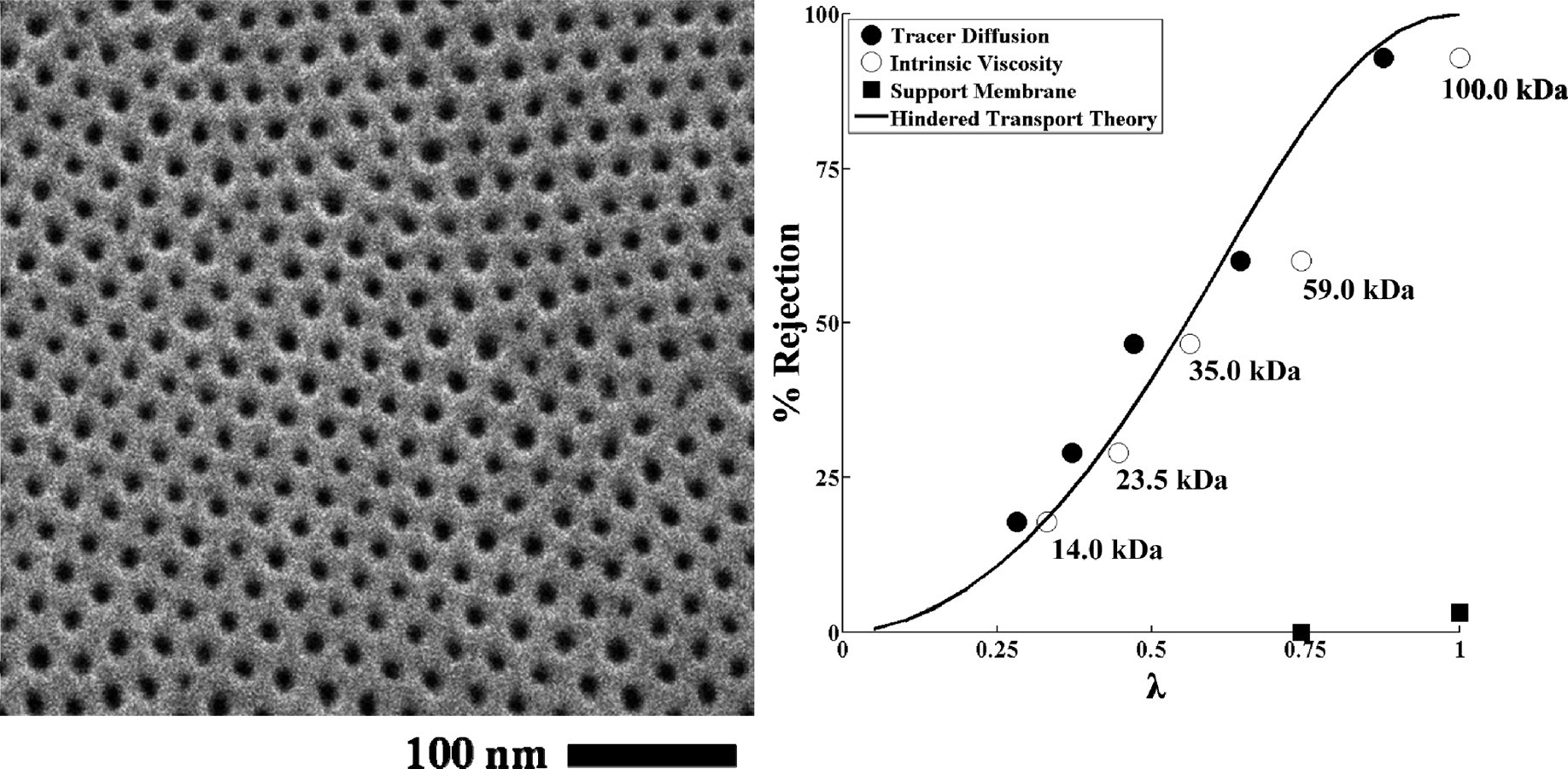 Self-Assembled Block Copolymer Thin Films as Water Filtration Membranes