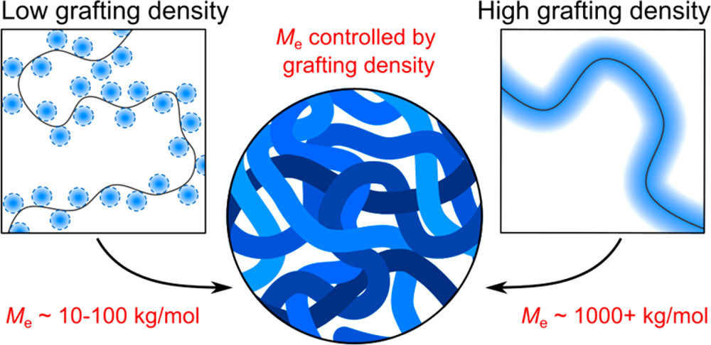 Table of contents graphic for Consequences of Grafting Density on the Linear Viscoelastic Behavior of Graft Polymers