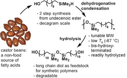 Polysilylether: A Degradable Polymer from Biorenewable Feedstocks